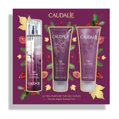 Caudalie The Des Vignes, set (3 x 50 ml)